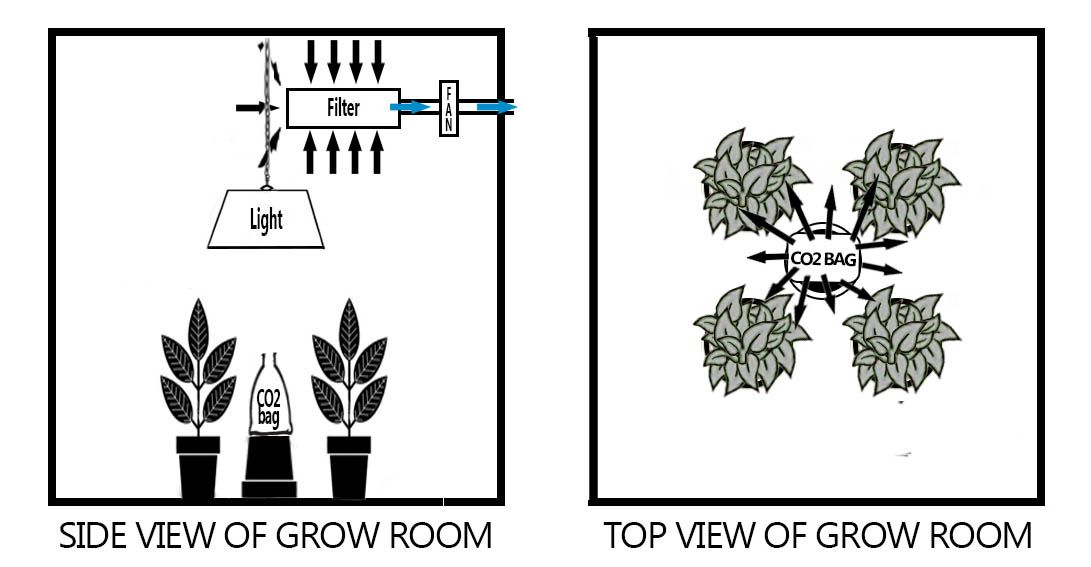 Most growers extract from the top of the grow room so the air in the room is dragged upwards. With this in mind you should place the CO2 bag in between your ...  sc 1 st  The Hydro Store & The Hydro Store Its In The ( CO2 ) Bag